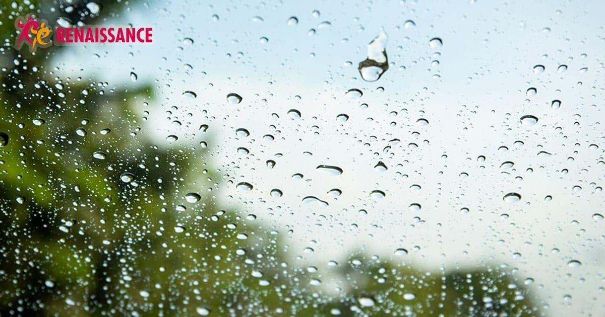梅雨の時期 気圧変化